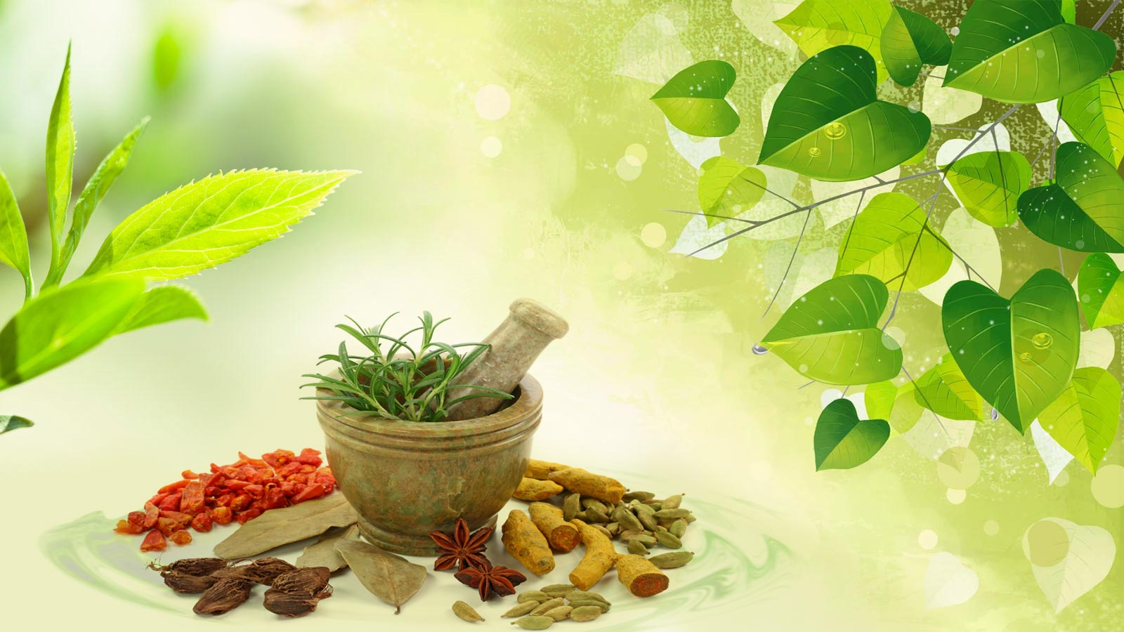 Uncover The Magic Of Ayurveda Health Izhaar Com
